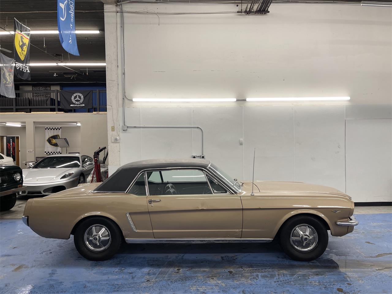 Ford Mustang V8 289 1964 prix tout compris 1964