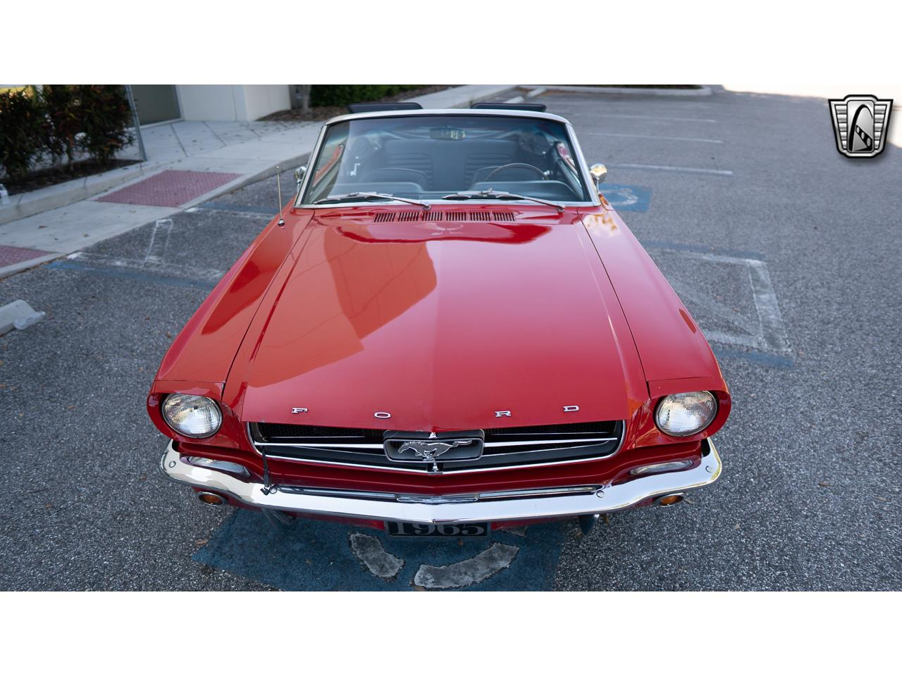 Ford Mustang V8 1965 prix tout compris 1965