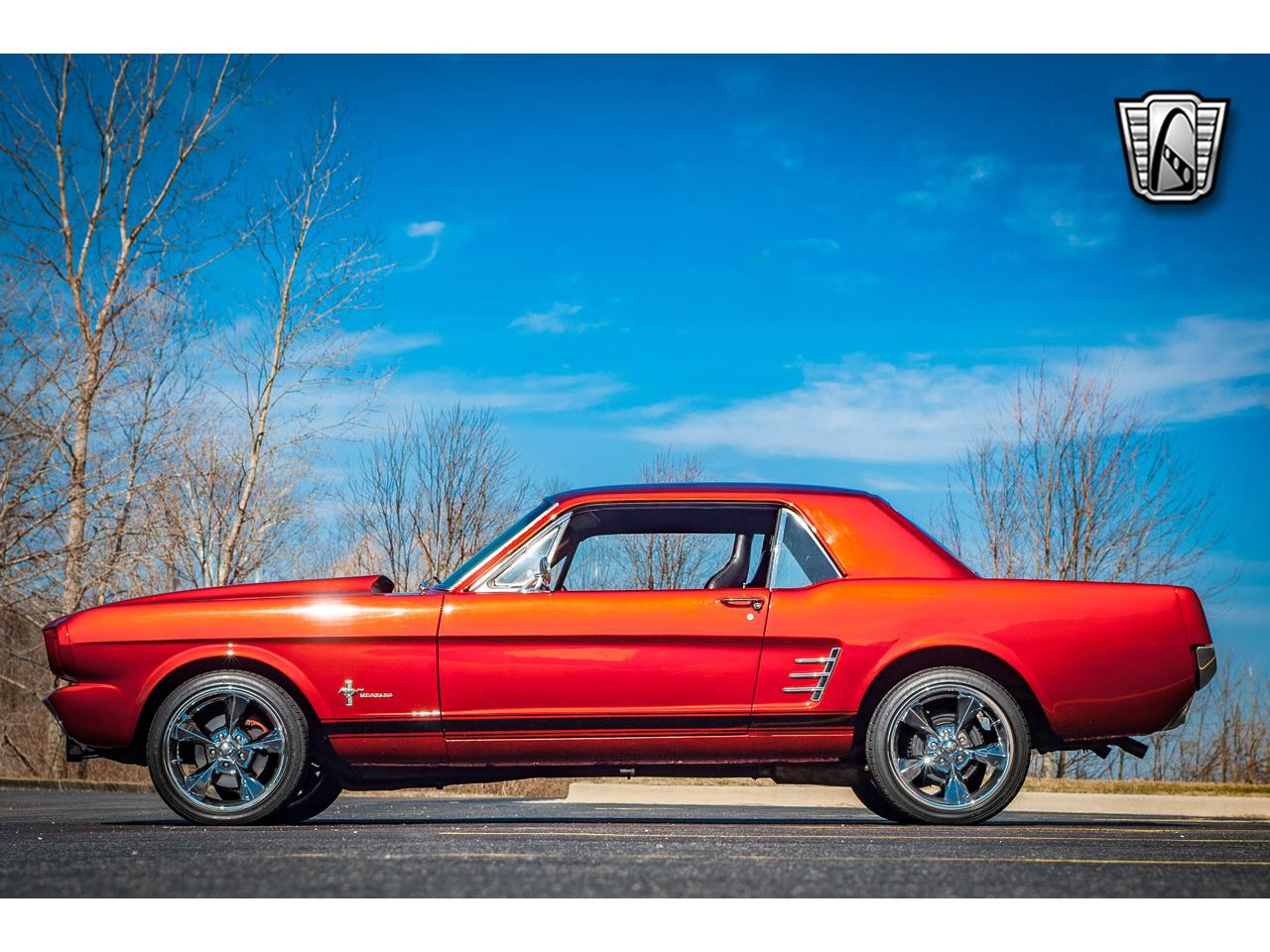 Ford Mustang V8 302 1966 prix tout compris 1966